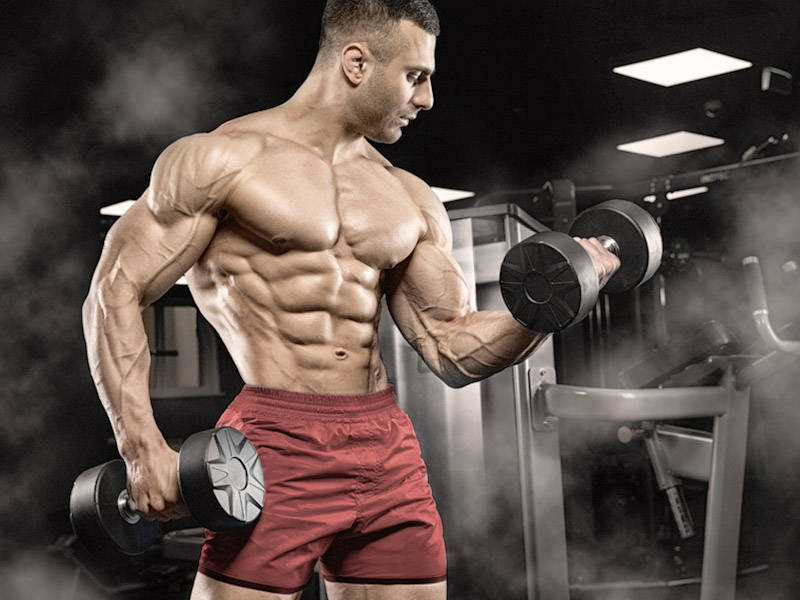 How to Gain Muscle Mass: Tips for Building Muscle - Old School Labs